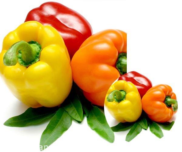 排出身体毒素你知道要吃什么吗?